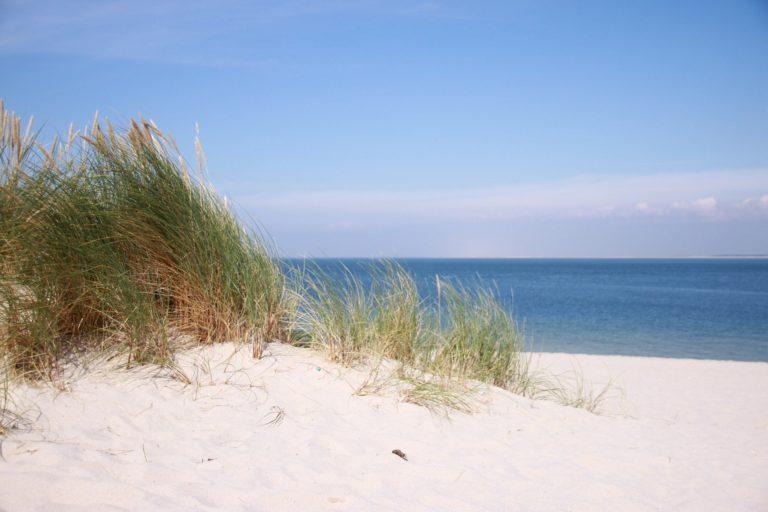 beach-2712166_1920